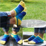 Using роман цвета для носка спорта 5
