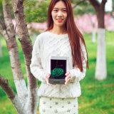 Rosa conservata Handmade fiorisce il regalo per la decorazione domestica