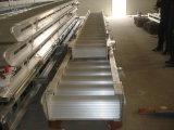 Boots-heiße Verkaufs-Passage-Strichleiter mit CCS/BV/ABS Zustimmungs-CERT