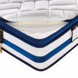 2017高品質の小型のばねのベッドのマットレス(FB915)