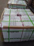 セメントデザイン床および壁600X600mmのための無作法な磁器のタイル300X600mm