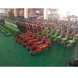 Ausgleich-Auto-faltbare Straßen-elektrisches Fahrrad des Rad-500W 2 (SZE500S-2)