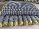 /Ячеистая сеть диаманта покрынные PVC гальванизированные ограждать ячеистой сети звена цепи