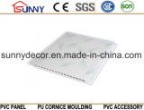 Panneau de plafond bon marché en plastique de PVC de matériau de construction de l'impression la meilleur marché pour le mur