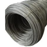 staal draad SAE1010 hard wordt getrokken om Spijkers te produceren die