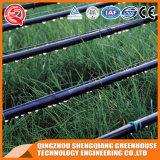 Serre chaude de feuille de PC de structure métallique d'agriculture pour le légume
