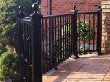 Cerca revestida residencial do jardim decorativo de pó preto