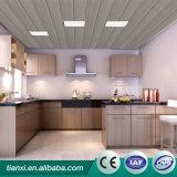 Modèles neufs de plafond de bruit d'OEM, panneau de mur de PVC