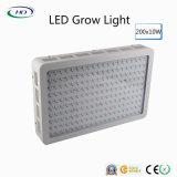 200PCS*10W 높은 루멘 LED는 실내 플랜트를 위해 가볍게 증가한다
