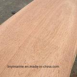 Contre-plaqué en bois de face d'eucalyptus pour le marché de Moyen-Orient