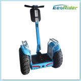 Lcd-Bildschirm-Mobilitäts-elektrischer stehender Roller-Doppelt-Batterieanlage E-Roller