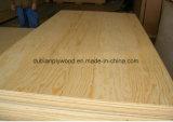Chapas de madera de calidad superior del álamo de madera de chapa de madera