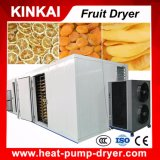 Secador de bandeja com base em tecnologia de bomba de calor para frutas