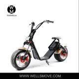 1000W 허브 모터 전기 전기 기관자전차 2 바퀴