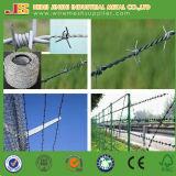 Dehnbare galvanisierte Zaun-Draht-Rolle, Stacheldraht