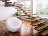 Moderna individual autónomo recta Escalera de vidrio con CE / Escaleras de madera