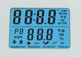 전체적인 아BS 플라스틱 체지방 가늠자 (HF3621)