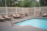 Clôtures de pool de vinyle