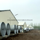 사료 공장/가축 농장 /Coldroom를 위한 가벼운 강철 구조물 농업 집