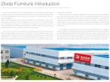 Bank van het Frame van de Fabriek van Foshan de Nieuwe Klassieke