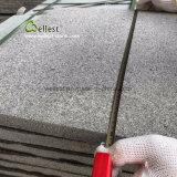 Brames/tuiles/escaliers foncés de granit du gris G654 de la Chine