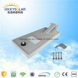 운동 측정기를 가진 1개의 태양 LED 가로등에서 중국 20W 높은 루멘 전부