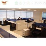 Diviseurs de pièce modernes mobiles de bureau de cloison de séparation de bureau utile