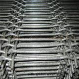 中型の炭素鋼のふるい鉱山のための石切り場によって前ひだを付けられる編まれたスクリーンの網