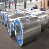 La alta calidad galvanizó la fábrica directa del acero