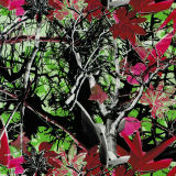 Commerce de gros Tsautop 0,5 m/1m de largeur et l'arbre de camouflage Hydrographic Film film d'impression Transfert d'eau de trempage Tsmh Hydro Film12514