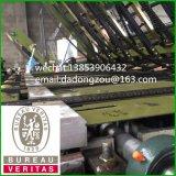 Máquina de la Sentir-Tarjeta para las chapas/el panel de la madera contrachapada que articula la máquina de Splcing de la máquina/de la chapa de la base