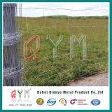 Frontière de sécurité tissée galvanisée de gisement de frontière de sécurité de ferme de cerfs communs de fil d'IMMERSION chaude