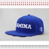 Cappelli Custom Designed di Snapback delle lane di 100%