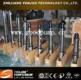 鉱山Borehole PumpかSubmersible Fountain Pump (QJ)