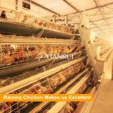 고품질 최신 직류 전기를 통한 Q235 가금은 판매를 위한 감금소를 층을 이룬다