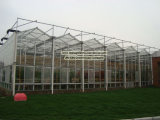Tomatoes Planting Glass Prefabricated Greenhosue in High-Quanlity