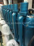Neuer Entwurf Qdx Garten-Bauernhof-elektrische versenkbare Wasser-Pumpen, (0.75KW/1.1kw/1.5kw)