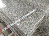 G664 розового гранита на бассейн/слоя REST/место на кухонном столе/пол и стены оболочка/лестницы/действия/бассейн справиться/Асфальтирование/строительные материалы