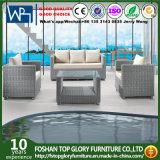 Im Freienaufenthaltsraum stellt 3+1+1 Patio-Garten-Möbel-Sofas mit Kissen Tg-Jw803 ein