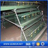 De Kooi van de Kip van de laag voor het Landbouwbedrijf van de Kip voor Sri Lanka