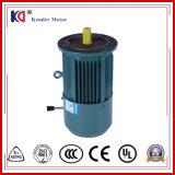 AC de Elektrische Motor in drie stadia van de Rem