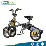 48V 250Wブラシレス後部モーター人電気浜のバイクの脂肪質のタイヤのEバイク