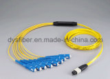 MTP-MTP 6.0mm 24 cavaliers optiques de câble de sortance de faisceaux