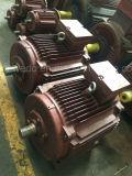 Motore asincrono a tre fasi di alta efficienza del motore elettrico Y3