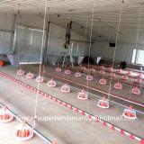 De Machines van het Landbouwbedrijf van het Gevogelte van de fabriek met de Vrije Loods van het Gevogelte van het Staal van het Ontwerp