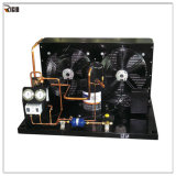 Élément se condensant de compresseur de la bonne qualité 2~15HP de Maneurop pour la réfrigération et la congélation