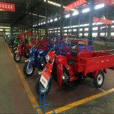250cc trois roues moteur Cargo Trike UTV avec de grands conteneurs