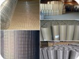 Wire saldato Mesh Galvanized 25mm*25mm Cina Professional Factory Supply