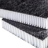 Panneau thermoplastique de fibre de verre, panneau de nid d'abeilles de Thermoplstic, bande thermoplastique