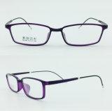 Vidros novos Eyewear dos frames óticos do projeto da meia forma de aço plástica clara super da fábrica